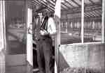 George Unsworth at the door of one of the Unsworth Greenhouses, Plains Road West.