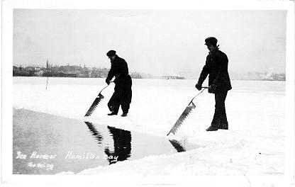Ice Harvest, Hamilton Bay: Sawing; postmarked September 5, 1920