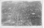 Burlington, Ont., Taken from an Aeroplane -- 5