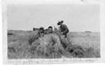 Art Brame and 2 co-workers with wheat stooks, Saskatchewan, 1923