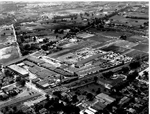 Maple Avenue, aerial view, 1954