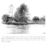 A view from Lake Ontario of Rosehill Farm, 1912