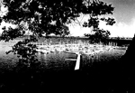 La Salle Park Marina, Aldershot, 1982