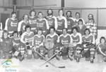 Baronet Shoes hockey team
