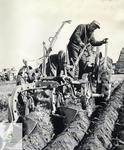 Annual Plowing Match, [1962?]