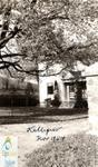 """""""Kelligrew""""home"""