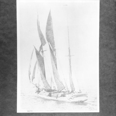 MEDORA ADA (1867)