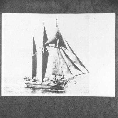 ROYCE E P (1873)