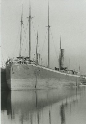 SWAIN, V. (1874)