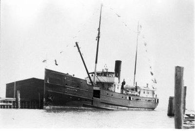 HYACINTH (1902)