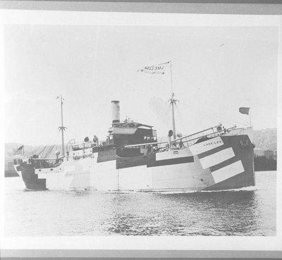 LAKE LESA (1918)