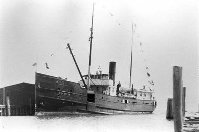 AMARANTH (1892)