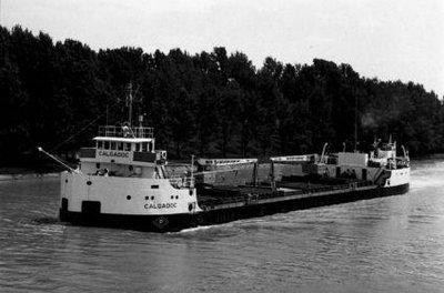 CALGADOC (1956)