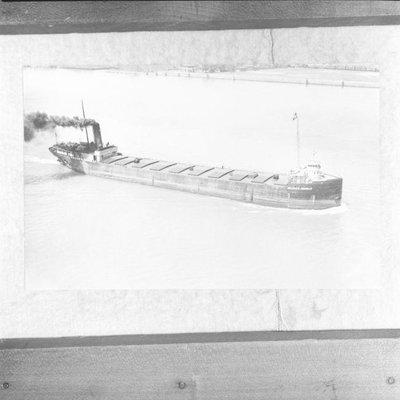 NEPTUNE (1901)