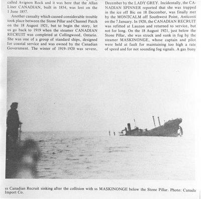 CANADIAN RECRUIT (1919)