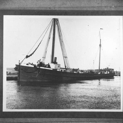 ALTA (1884)
