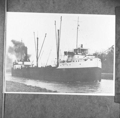 PHENICIA (1929)
