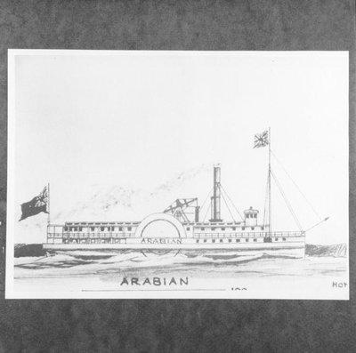 ARABIAN (1857)