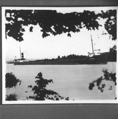 SYLVANIA (1905)