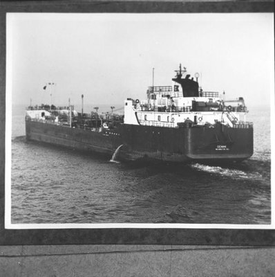 GEMINI (1978)