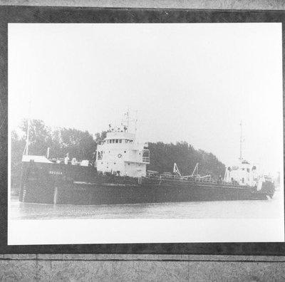 CEDARBRANCH (1951)