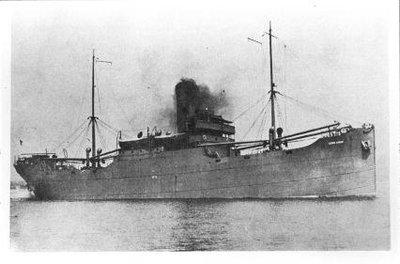 CERRO GARDO (1919)