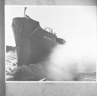 GIFFORD ALDEN (1942)