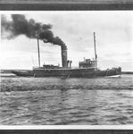 BALLENAS (1919)