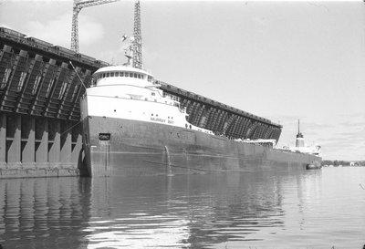 MURRAY BAY (1963)