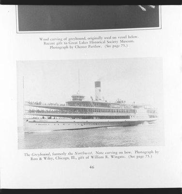 GREYHOUND (1902)