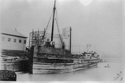 HAMILTON (1901)