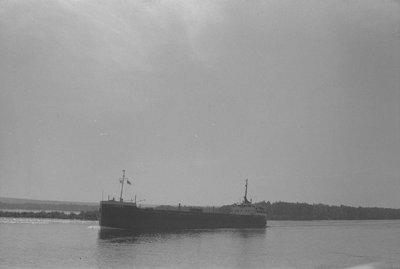 GRIFFON (1955)