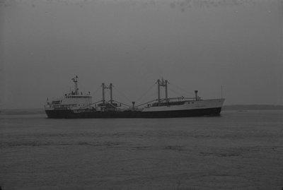 HAMILDOC (1963)