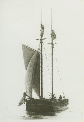 CORONET (1887, Scow Schooner)