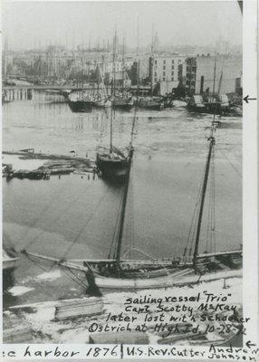 TRIO (1865, Scow Schooner)