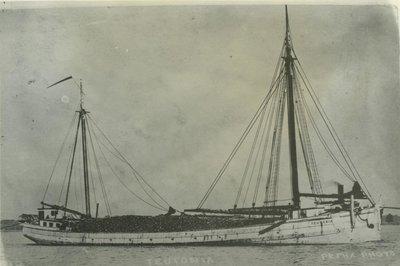 TEUTONIA (1881, Schooner)