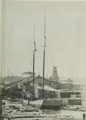 SEA BIRD (1881-82, Scow Schooner)
