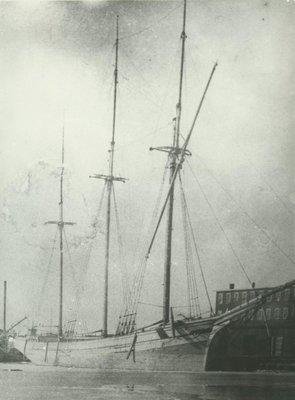 COOPER, LOTTIE (1876, Schooner)