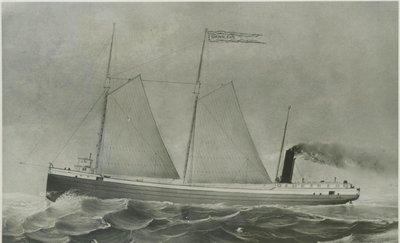 WILSON, D.M. (1873, Bulk Freighter)