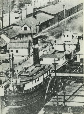 ARABIA (1873, Package Freighter)