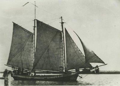 GOLD LEAF (1903, Schooner)