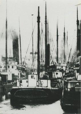 TOKIO (1889, Schooner-barge)