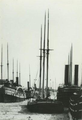 ADRIATIC (1889, Schooner-barge)
