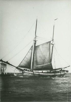 ULSTER (1874, Scow Schooner)