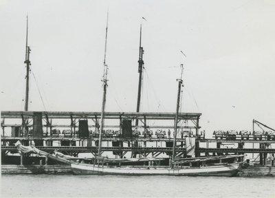 FX (1866, Scow Schooner)