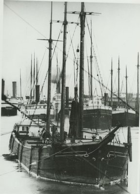 HARLEQUIN (c1856, Sloop)