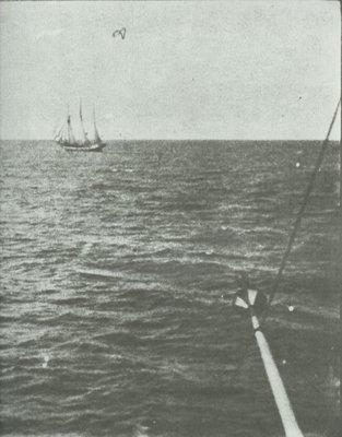 OLGA (1881, Schooner)