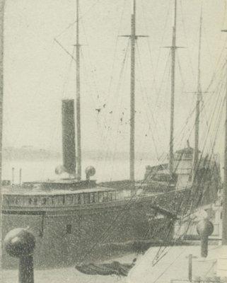 VIENNA (1873, Bulk Freighter)