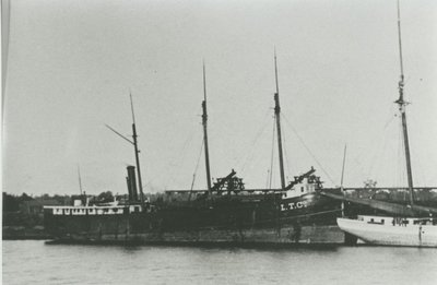SAGINAW VALLEY (1881, Package Freighter)