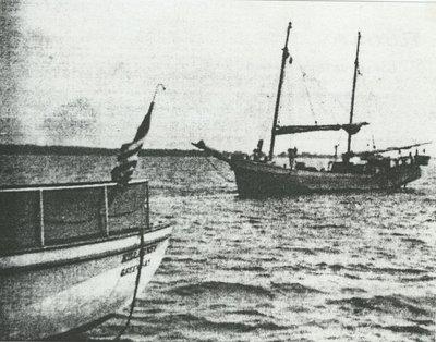 FLOTILLA (1891, Schooner)